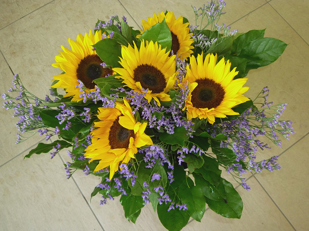 Blumen Oase